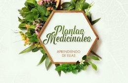 Plantas Medicinales – Aprendiendo de ellas