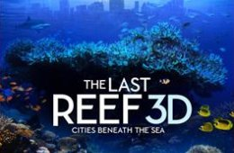 The Last Reef in 3D