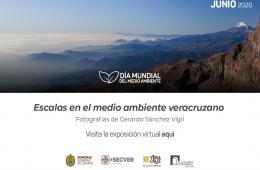 Exposición virtual: Escalas en el medio ambiente veracru...