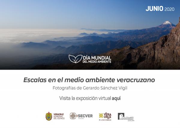 Exposición virtual: Escalas en el medio ambiente veracruzano