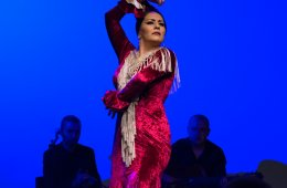 Hojas de té presenta: Gala Flamenca