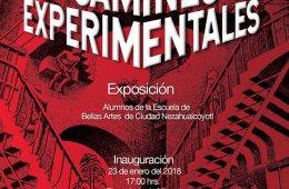 Caminos experimentales