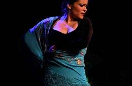 Espectáculo de flamenco y presentación del calendario D...