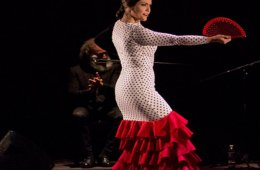 The Flamenco and Its Context in Mexico