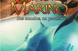 Oasis Marino
