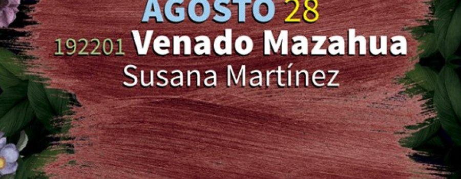 Venado Mazahua