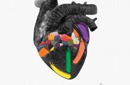 Yolcuecuechca: Temblar el corazón
