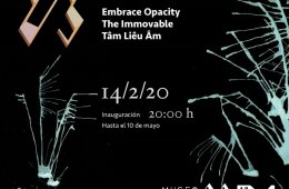 Embrace Opacity  The Immovable Tam Lieu Am