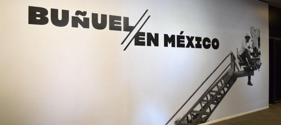 Buñuel in Mexico