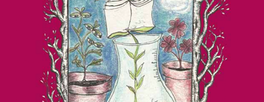 Abelardo Tubersum, una papa ilustrada