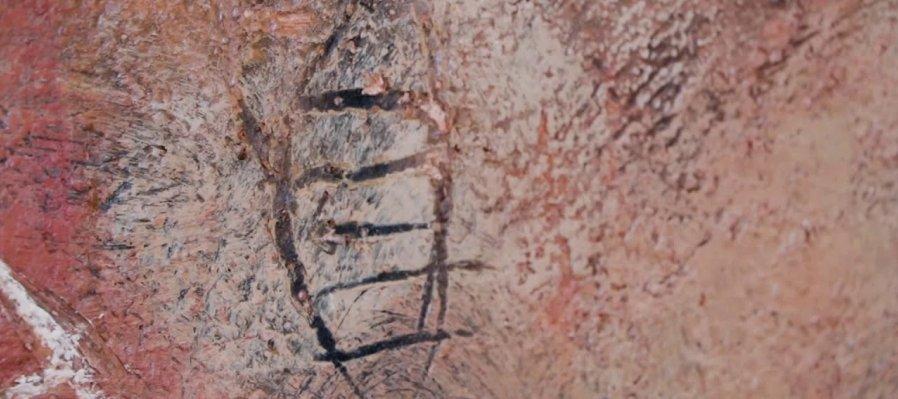 Cápsulas ADN Tierra Ignota Knut Pani