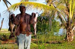 Tres por tres. Afromexicanos en Guerrero, Veracruz y Coah...