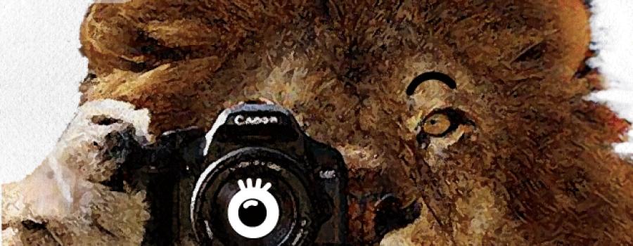 Agencia de reporteros: Taller de fotografía