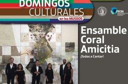 Amicitia Ensamble Coral
