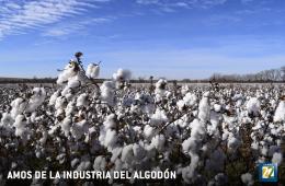 Amos de la industria del algodón