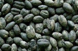 Arqueobotánica, Alcances y Limitaciones