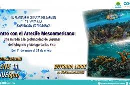 Encuentro con el arrecife mesoamericano