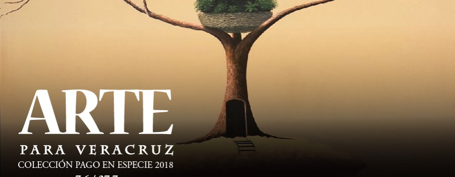 Arte para Veracruz
