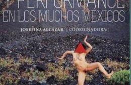 Arte acción y performance en los muchos Méxicos