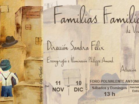 Banner familias familiares 480