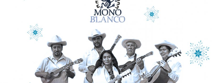 Ciclo de conciertos especiales OSN. Mono Blanco