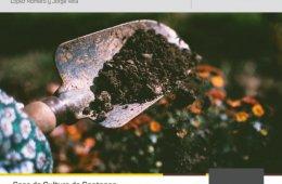 Elaboración de fertilizantes e insecticidas.