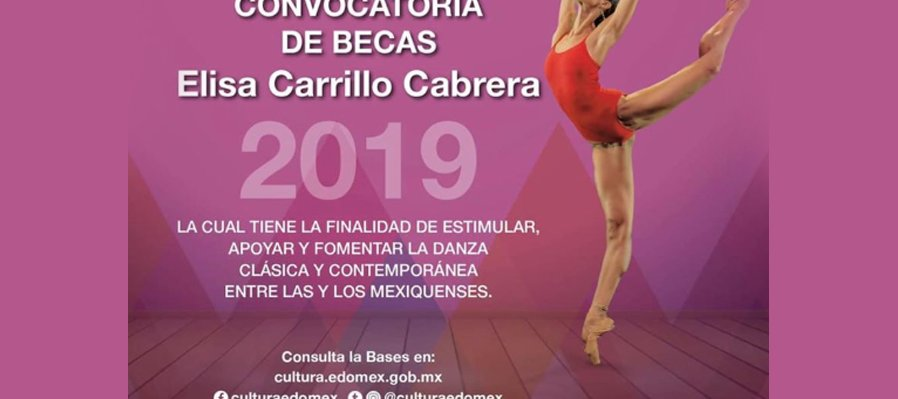 Convocatoria de becas Elisa Carrillo Cabrera 2019