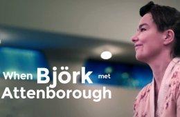 When Björk Met Attenborough