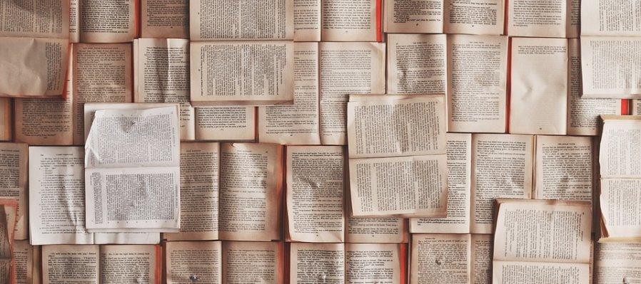 Literatura en lenguas originarias de México: Briceida Cuevas Cob