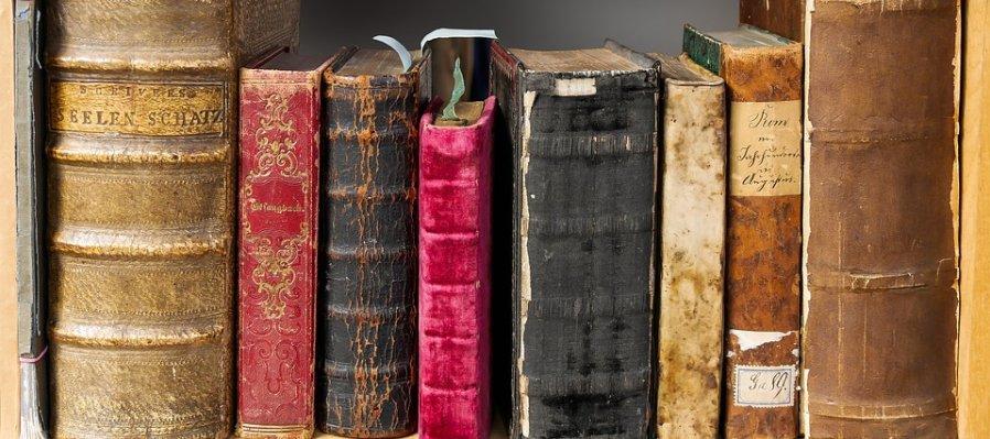 Anímula. Historias diminutas soñadas por Madame Vulpes