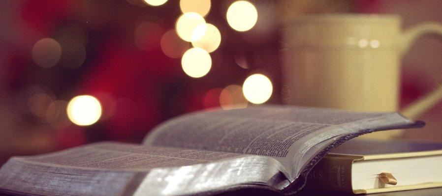 Literatura interdisciplinaria: La práctica