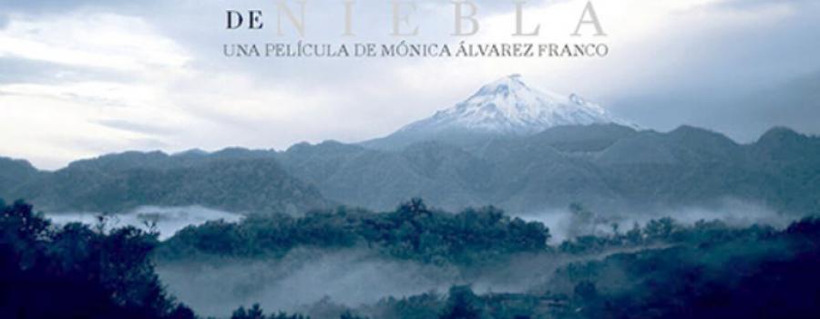 Bosque de Niebla, 2017