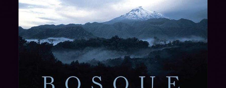 Bosque de Niebla