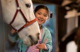 El caballo de Winky