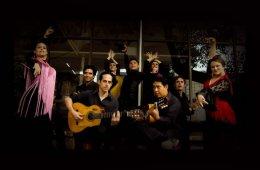 Flamenco: Path and Footprint