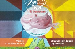 Amoxtli Group