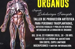 Fábrica de órganos