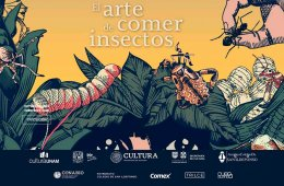 El arte de comer insectos
