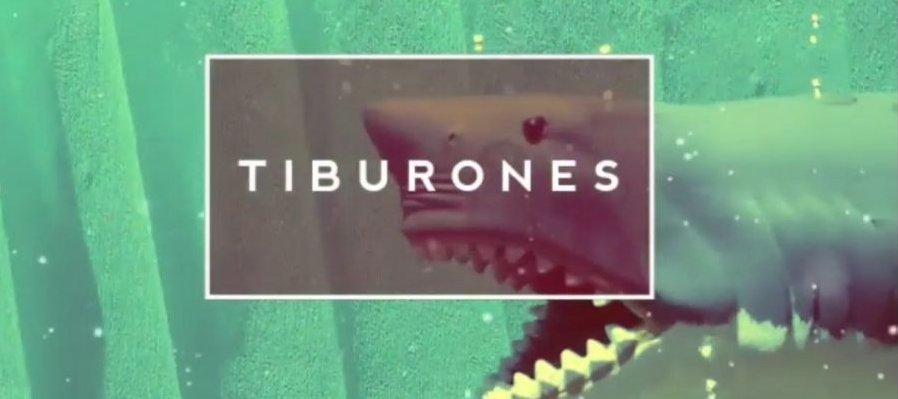 DippyTv Tiburones