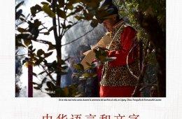 Cultura, Lengua y escrituras de China