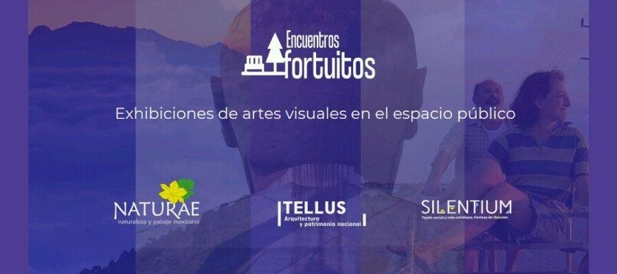 Encuentros fortuitos. Exhibiciones de artes visuales en el espacio público