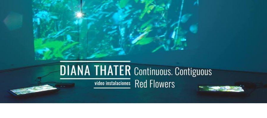 Continuous. Contiguous y Red Flowers de Diana Thater