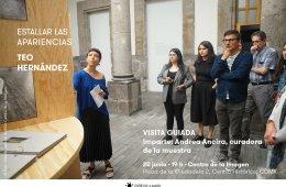 Visita Guiada: Estallar las apariencias