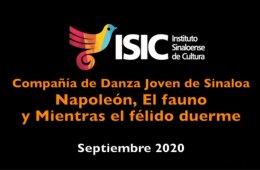 Danza Joven de Sinaloa presenta: adaptación en casa por ...