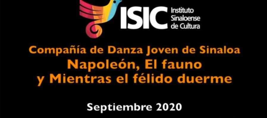 Danza Joven de Sinaloa presenta: adaptación en casa por contingencia 2020