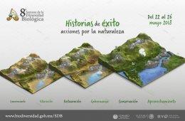Biodiversidad en plastilina: especies en riesgo