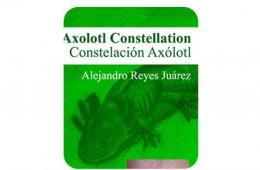 Constelación Axólotl