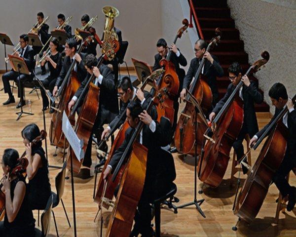 Recital de Contrabajo de la Orquesta Escuela Carlos Chávez