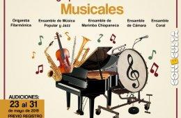 Conformación de grupos artísticos musicales