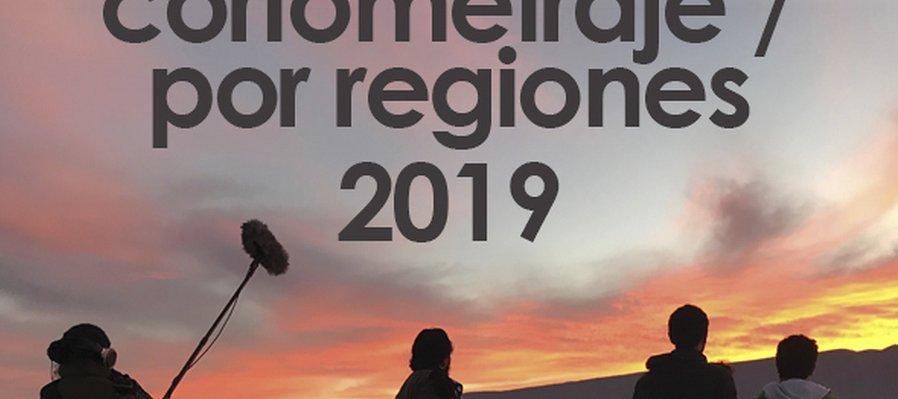 Convocatoria del 19º Concurso Nacional de Proyectos de Cortometraje / Por regiones 2019 - Postproducción
